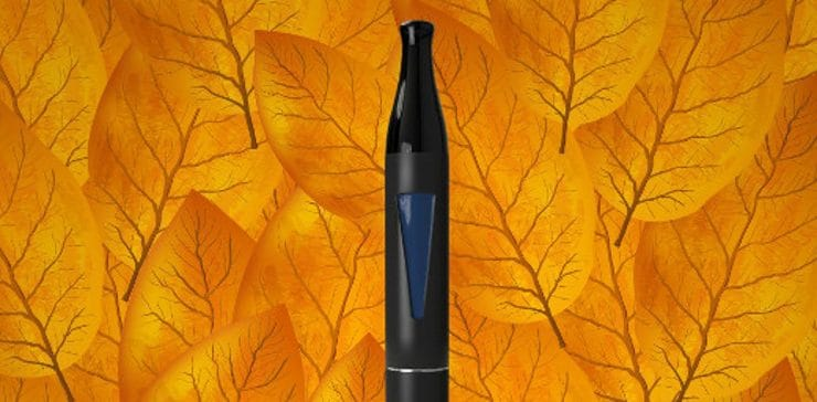 blu™ Vape Juice Flavors That Complement Fall