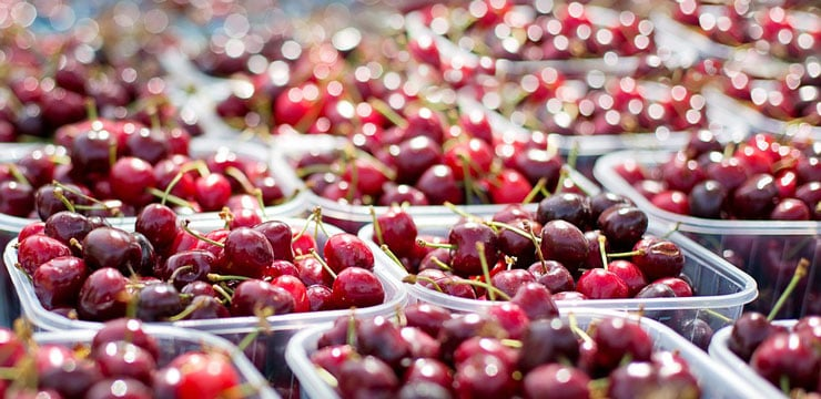 A close-up of many plastic trays of cherries