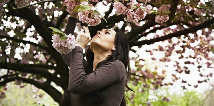 Vaping flavors in spring