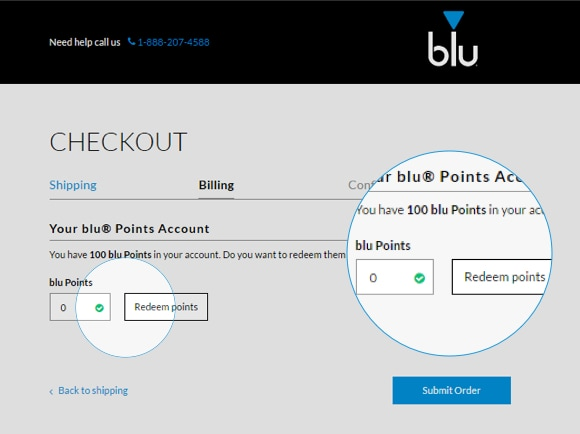 An image showing where users can choose to enter their bluNation points at the checkout page