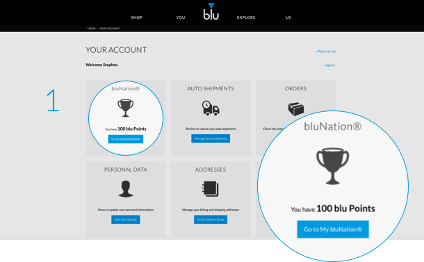 An image showing where bluNation subscribers can view the number of points in their account