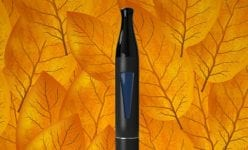 Autumnal Flavours To Vape