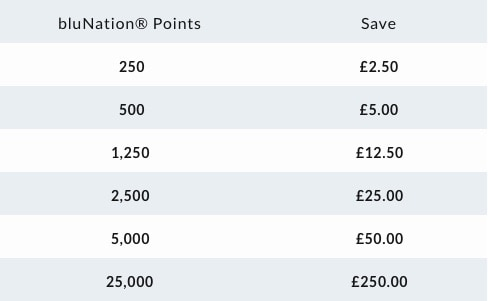 A table showing the value of bluNation points