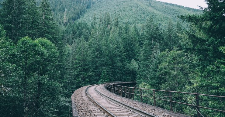 A train track winding through a green forest
